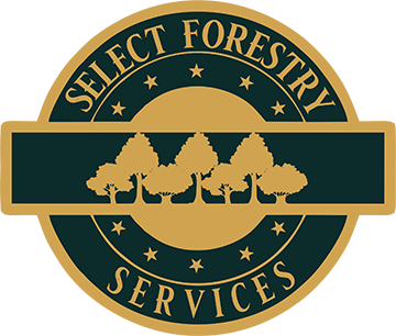 Forestry Service - Forestry Management